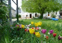 Loire Valley Bed & Breakfast Accommodation